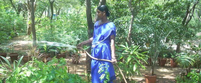 Environmental protection in Tamil Nadu by the NGO Social Change and Development