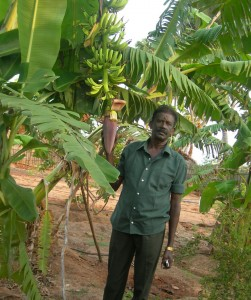 Banana farmer at NGO Social Change and Development